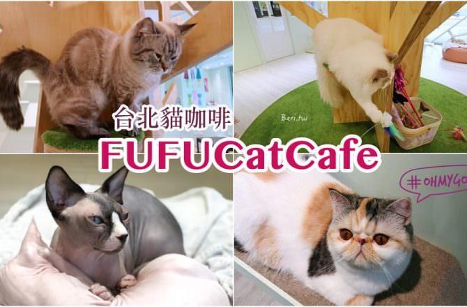 台北貓咖啡 FUFUCat Cafe 內湖超可愛貓奴天堂,超療癒的小貓陪你玩!貓餐廳 交通