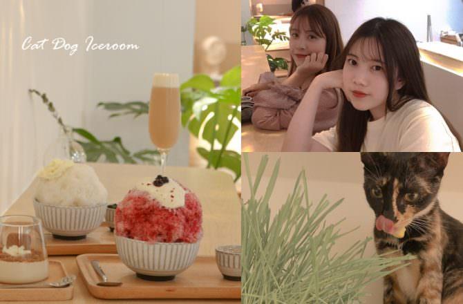 【信義安和咖啡廳】貓奴必收藏「貓狗冰室」療癒日系刨冰,台北寵物友善、貓咪咖啡廳